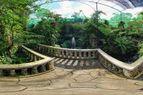 Kuala Lumpur Orchid Garden, Butterfly, Bird Parks: Nature Tour