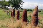 Metsamor Historical-Archeological Museum-Reserve