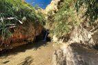 Ein Gedi Reserve