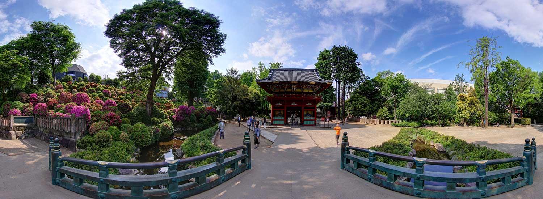 Tokyo:  Sightseeing Virtual Tour
